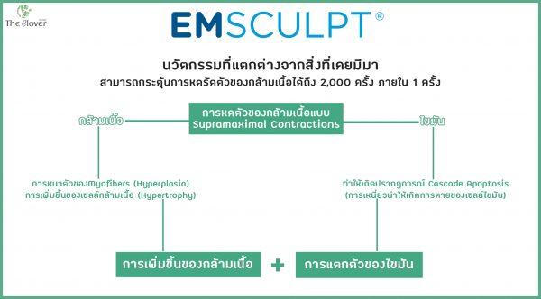 Emsculpt กลไกการทำงาน